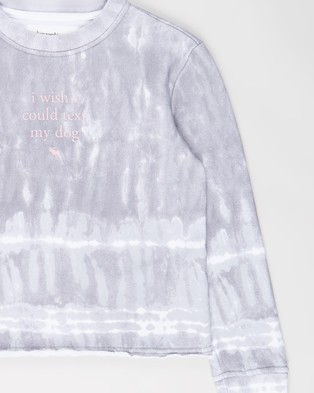 Abercrombie & Fitch Graphic Sweat Top   Teens - Sweats (Grey Wash)