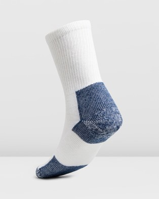 Thorlo Running Crew Socks - Underwear & Socks (White & Navy)