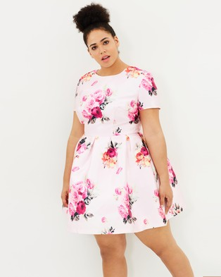 Chi Chi Curve – Kara Rose Dress – Dresses (Pink)