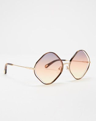 Chlo?? CE159S - Sunglasses (Havana & Grey Orange Yellow )
