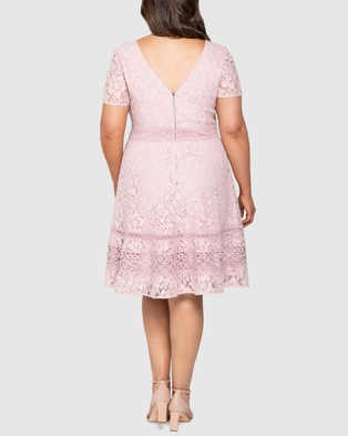 Forever New Curve Selena Curve Lace Prom Dress - Dresses (BLUSH)