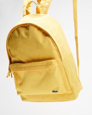 Lacoste Neocroc Backpack - Backpacks (Samoan Sun)