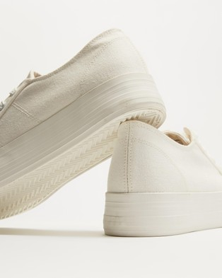 Dazie Penny Sneakers - Sneakers (White Canvas)