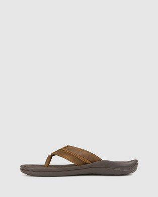 Airflex Tom Leather Sandals - All thongs (Brown)
