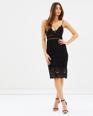 Bardot – Botanica Lace Dress Black