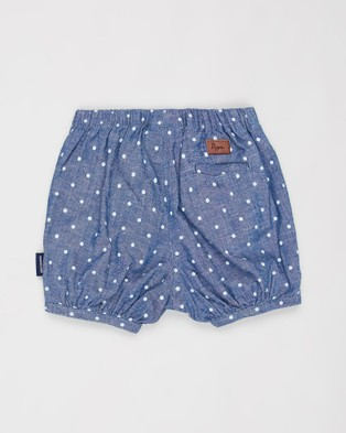 Pappe Beau Bloomers   Babies Kids - Bloomers (Mid Blue Spot)