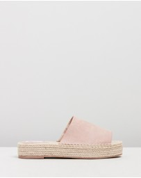 Dazie - ICONIC EXCLUSIVE - Alabama Mules