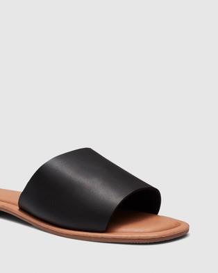 Novo Squeeze - Sandals (Black)
