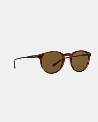 Polo Ralph Lauren Flair PH4110 - Sunglasses (Havana & Olive Green)
