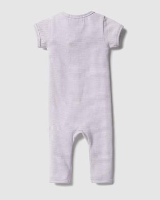 Wilson & Frenchy Organic Stripe Rib Zipsuit   Babies - All onesies (Lavender Ecru)