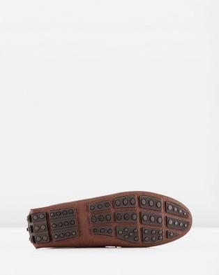 Aquila Balfort - Casual Shoes (Brown)