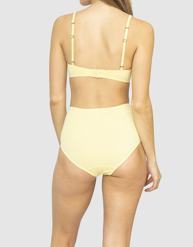 Women Plant Dyed Organic Cotton High Waisted Briefs