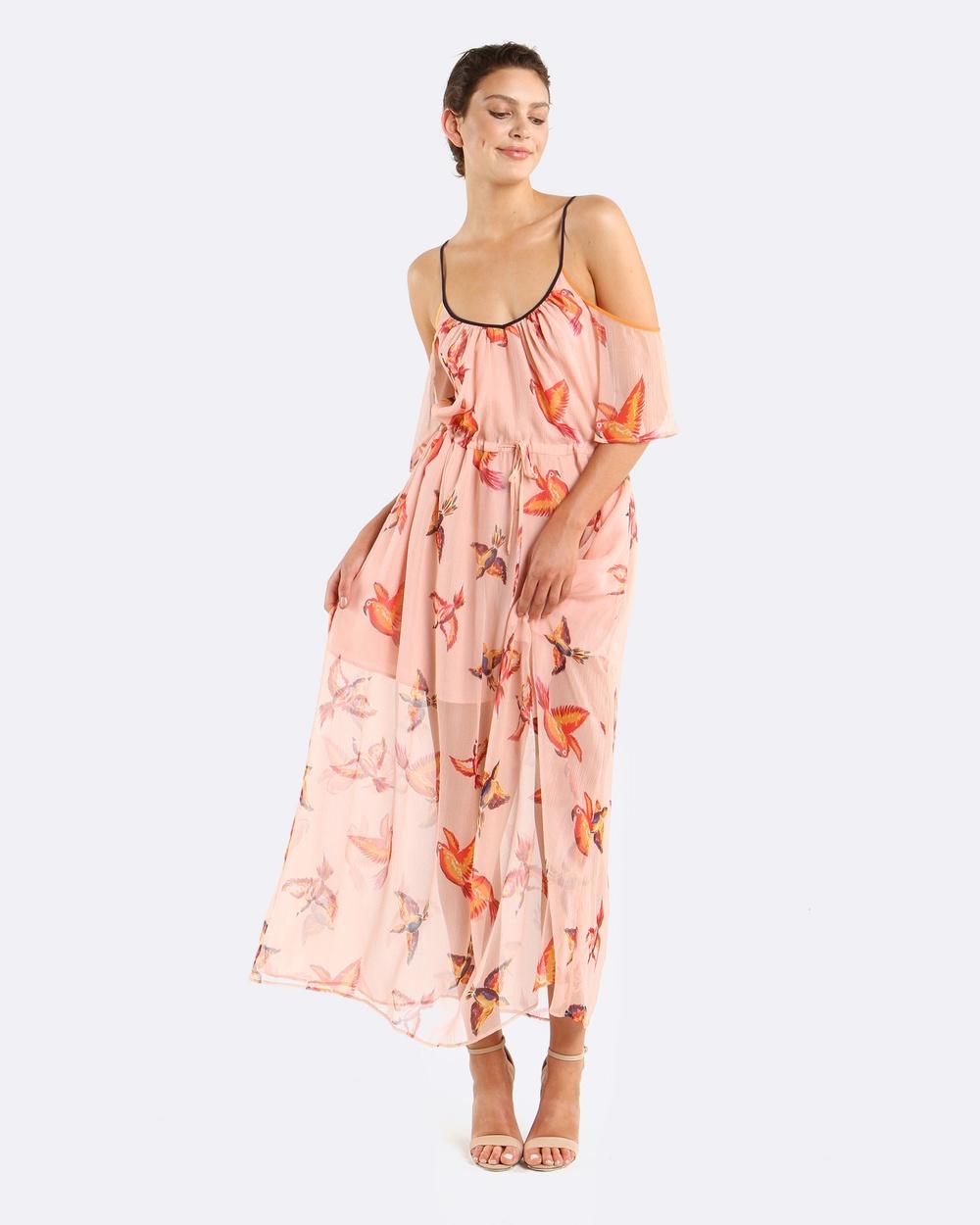 Coco Ribbon Parrot Polka Maxi Dress Dresses Peach Parrot Parrot Polka Maxi Dress