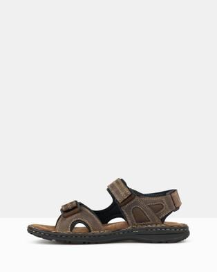 Airflex Robert Sports Sandals - Casual Shoes (Brown)