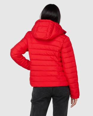 Superdry Classic Fuji Padded Jacket - Coats & Jackets (High Risk Red)