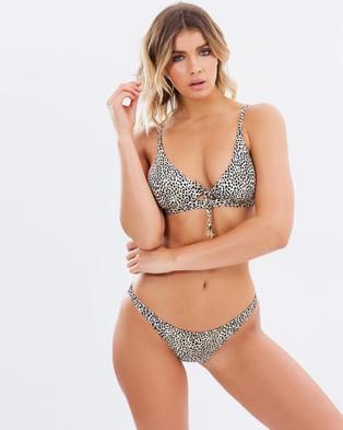 Tigerlily – Bilqis Miranda Leopard