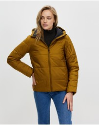 Icebreaker - Collingwood Hooded Jacket
