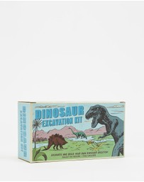 REX - Dinosaur Excavation Kit