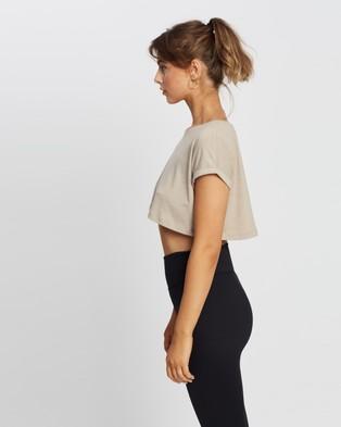 Aim'n - Roll Sleeve Crop Top Short T-Shirts (Espresso Melange)