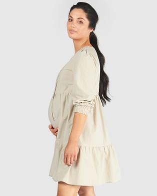 Pea in a Pod Maternity Paige Nursing Dress - Dresses (Lychee)