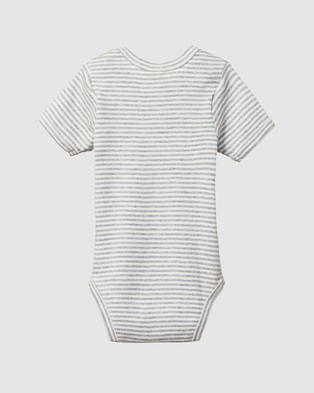 Nature Baby Short Sleeve Bodysuit   Babies - Bodysuits (Grey Marl Stripe)