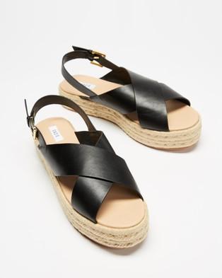 Dazie Sandy Flatforms - Flats (Black Smooth)