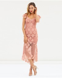 Bardot - Lucy Lace Dress