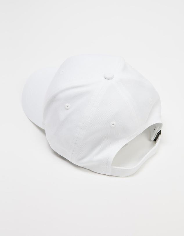 Men Established Cap