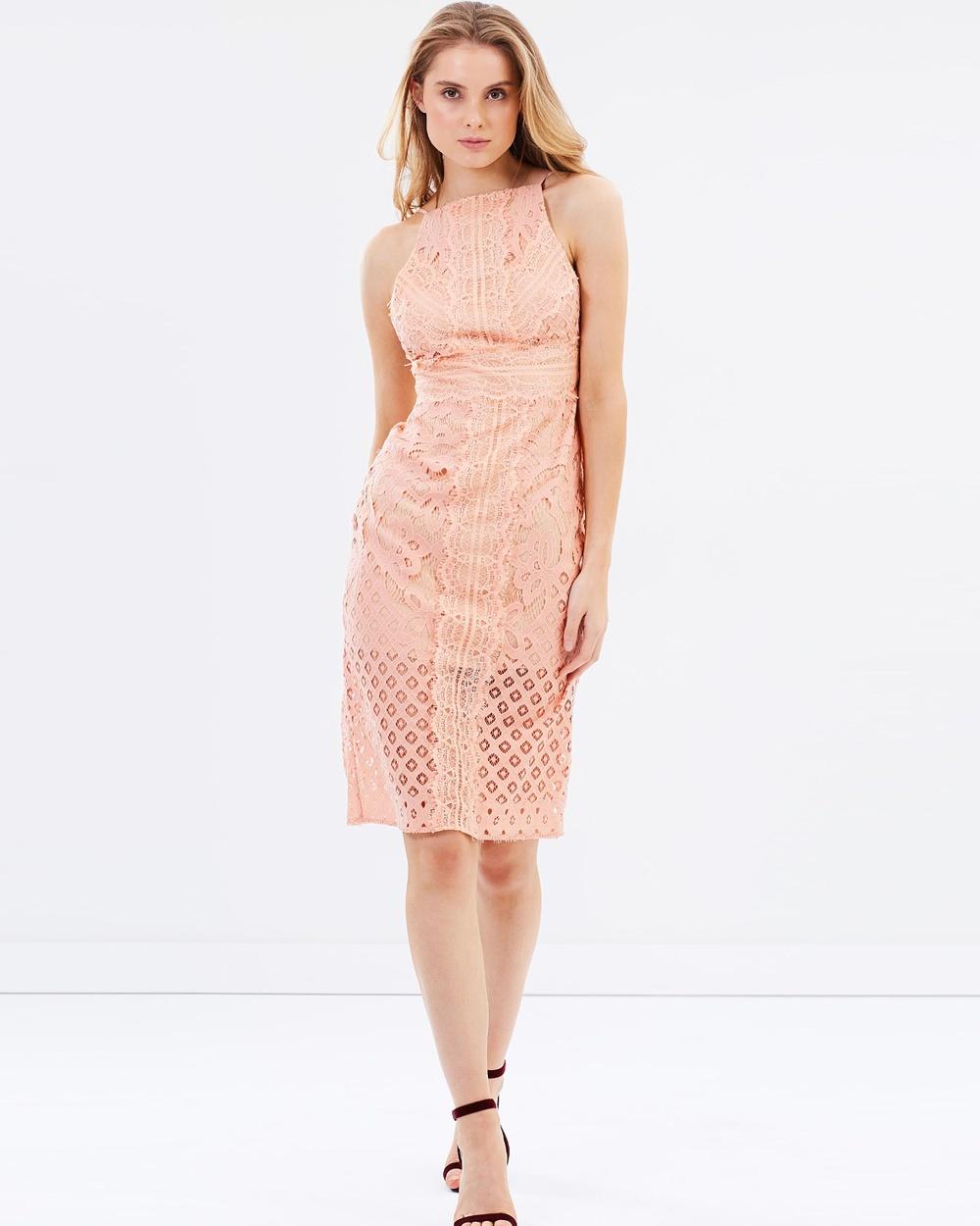 Keepsake the Label Bridges Lace Midi Dress Dresses Blush Bridges Lace Midi Dress