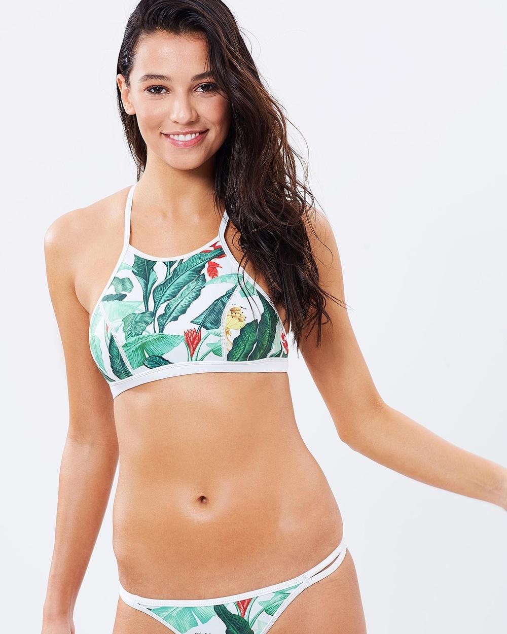 Duskii Oasis Halter Bikini Top Bikini Tops Palma Oasis Halter Bikini Top