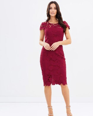 Pink Ruby – Uptown Lace Dress – Dresses (Wine)