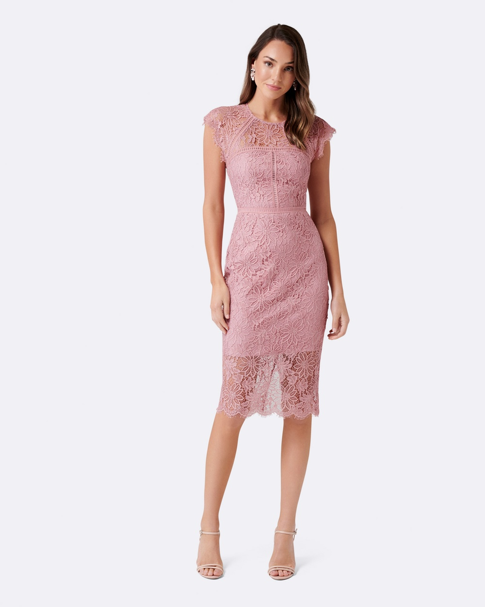 Forever New Petite Petite Tara Lace Pencil Dress Dresses Pink Flutter Petite Tara Lace Pencil Dress