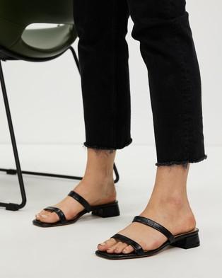 ALDO - Biliwen Mules - Sandals (Black) Biliwen Mules