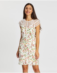 Review - Sunset Floral Dress