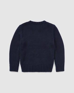 Polo Ralph Lauren Flag Sweater   Kids (5 7 yrs)