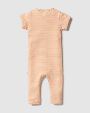 Wilson & Frenchy Organic Stripe Rib Zipsuit   Babies - All onesies (Marigold Ecru)