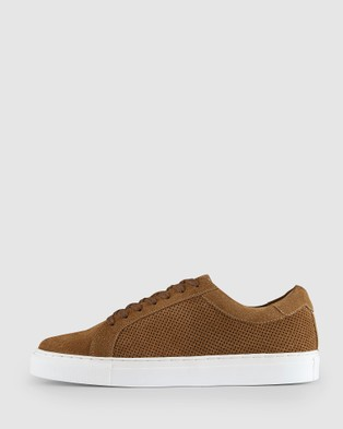 AQ by Aquila Lonie Sneakers - Lifestyle Sneakers (Tobacco)