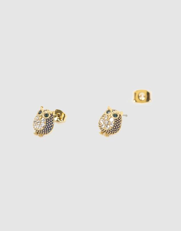 Women Fancy Earring Owls